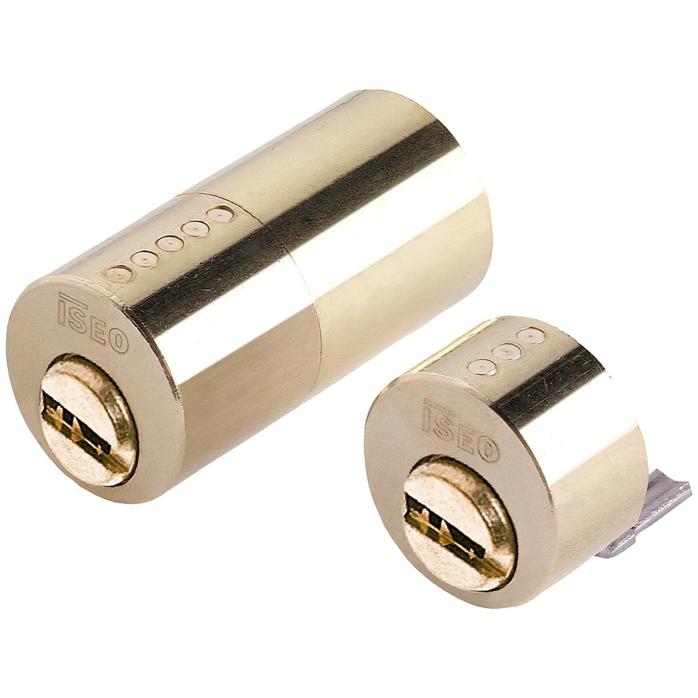 Cilindro Iseo R6 Seguridad Para Cerradura 500