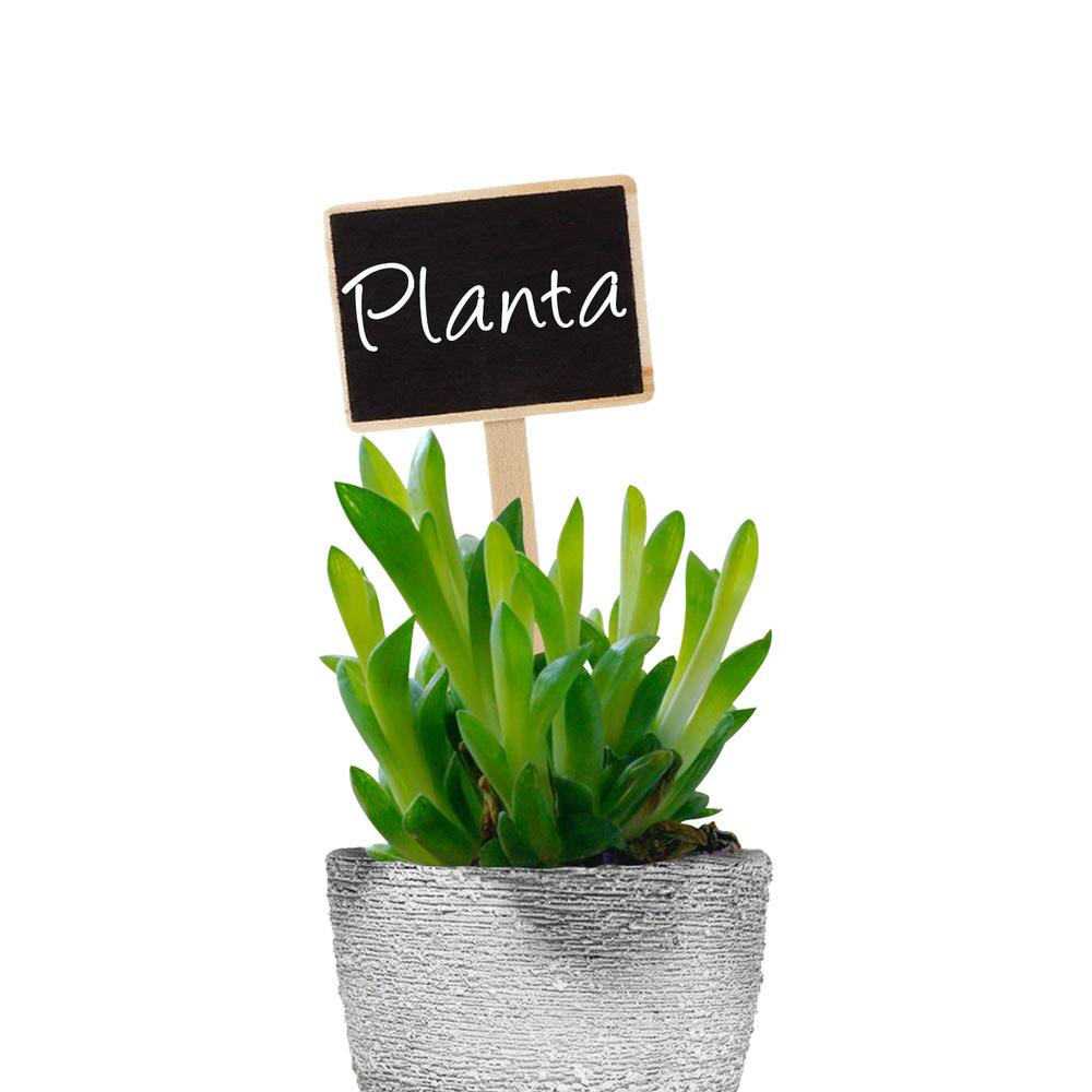 Etiqueta Marcadora Madera Con Efecto Pizarra Para Plantas Bolsa 10 Unidades