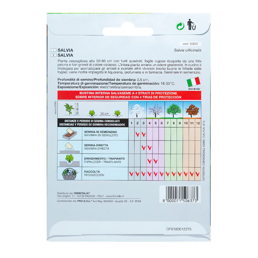 Semillas Aromaticas Salvia (1 gramo)